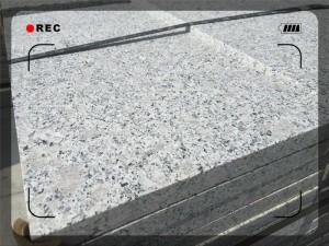 White bala (7)(04-22-12-24-18)